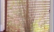 Timber venetian 50mm